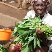 Makeni market trader